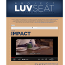 Southwest Airlines LuvSeat